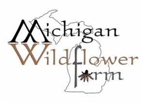Michigan Wildflower Farm MI Asclepias Milkweed