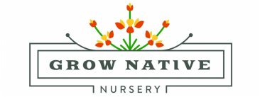 Grow Native Nursery Milkweed Asclepias CA